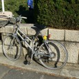 20081130_tokyocycle_004
