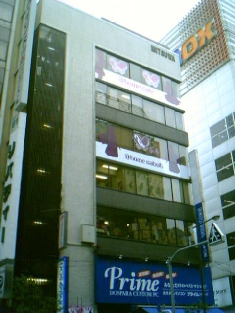 20060429_akiba_002