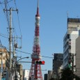 20081130_tokyocycle_005
