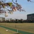 20090331_tokyo_001