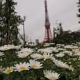 20100331_tokyotower_001