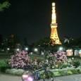 20110525_tokyonightcycle_002
